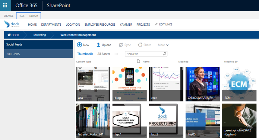 sharepoint_intranet_portal_marketing_portal_branding_2